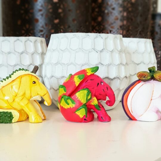 3 in a row: Exotic Fruits Elephant Parade 3 Pack Giftbox - available at The Cinnamon Room